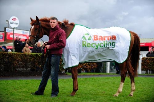 Barna Recycling Novice Hurdle