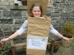 <h5>Hunt N.S. </h5><p>Caítlinn Bann, 6th Class, Caítlinn made her costume with  papier maiche, a cardboard box brown paper, cellotape and markers.</p>